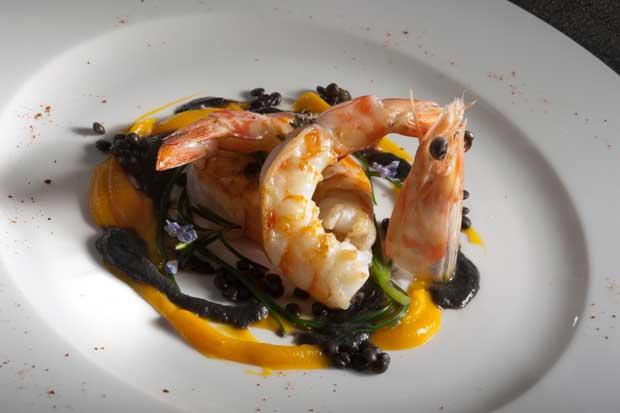 Libro ricette alta cucina ricette popolari sito culinario for Ricette alta cucina italiana