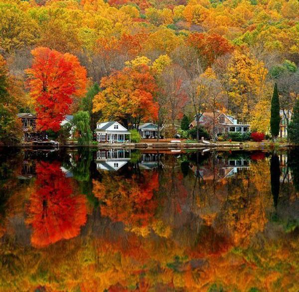 I Posti Pi 249 Belli Dove Ammirare Il Foliage D Autunno In