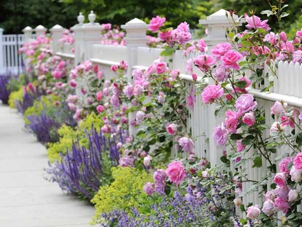 Conosciuto Come arredare il giardino in stile shabby chic   Viviconstile HD28