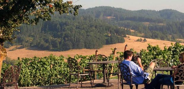 Winedering, la nuova piattaforma online per il turismo enogastronomico
